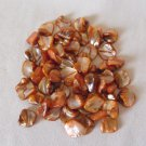 Orange Free-form Shell Beads