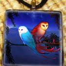 Blue and Red Owl