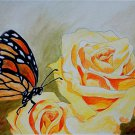 Butterfly Effect Watercolor on paper 11x15