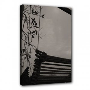 16x20 Gallery Wrap Peaceful Swing