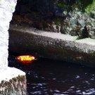Bridge Over Troubled Water 8x10
