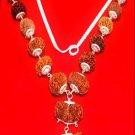 combination of 1 mukhi rudraksha to 14 Mukhi rudraksha of nepal