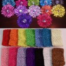Baby Crystal Zebra Flower Gerbera Headbands