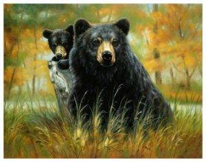 Black Bear Mom & Son, Mink Style Queen Size Soft & Warm Blanket_Q980E