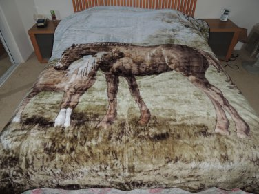 Mare & Foal, Mink Style Queen Size Soft & Warm Blanket_Q981E