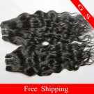 Brazilian Human Hair weave Virgin Remy Hair Extensions water Wave 16Inch 2packs 8oz Black and Brown