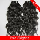 "Retail Top Quality Brazilian Human Hair Weave water Wave 28""  12oz Free shipping"