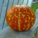 20 Heirloom Tigger Mini Melon Seeds