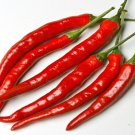 20 Long Thick Cayenne Pepper Seeds