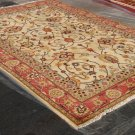 Best Quality Hand Made Vegetable Dyed Peshawar Oriental Kargai Chobi Rug Carpet  7x10 i12608