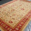 Rare Hand Made Vegetable Dyed Peshawar Oriental Chobi Rug 12x8 i30731
