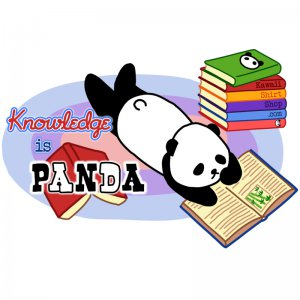 Ladies&#039; T-Shirt - Size XL - White - Kawaii Knowledge is Panda