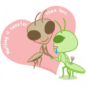 Ladies' T-Shirt - Size XL - White - Kawaii Valentine - Praying Mantis