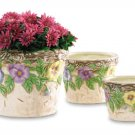 Morning Glory Flower Pot Trio