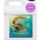 Premium Organic Seaweed Fertilizer Concentrate 1 Qt