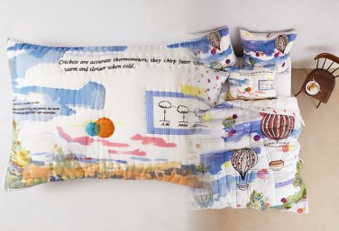 2 Pcs Anthropologie Petherton King Shams Cotton Whimsical Balloons Cheerful Happy