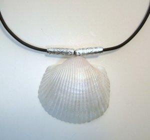Genuine Sea Shell Pendant Necklace