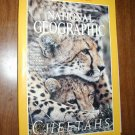 National Geographic Vol. 196, No. 6 December 1999 Cheetahs