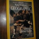 National Geographic Vol. 195, No. 5 May 1999 Africa's Wild Dogs