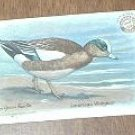 Arm & Hammer Baldpate or American Widgeon 4 th Series No. 4 Trading Card