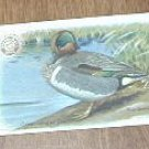 Arm & Hammer Green-Winged Teal 4 th Series No. 15 Trading Card