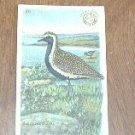 Arm & Hammer Golden Plover 4 th Series No. 25 Trading Card
