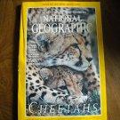 National Geographic Vol. 196, No. 6 December 1999 Cheetahs