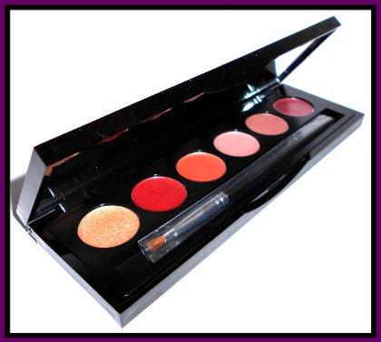 Sheer cover modern neutrals lipgloss palette comes with 6 for Modern neutrals palette