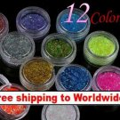 12 x Glitter Lace Powder for Nail Art + Free shipping!