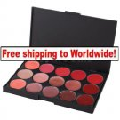 15 Color Lip Gloss Palettes Set BC+ Free shipping to worldwide!