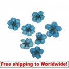 30pcs Dried flower BG+ Free shipping to worldwide!