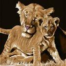 Lions,  Q953