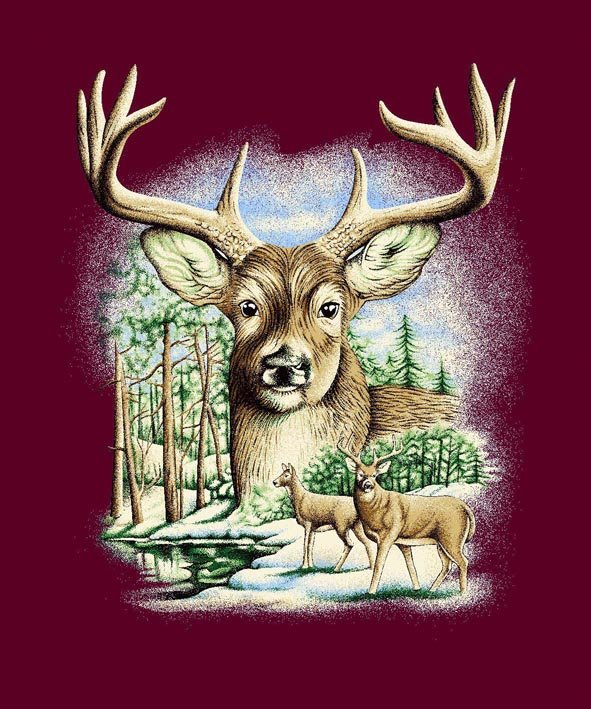 Q024 Deer  Head