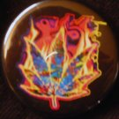 MYSTICAL POTLEAF pinback button badge 1.25""