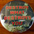 DESTROY WHAT DESTROYS YOU #2 pinback button badge 1.25""