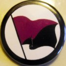 ANARCHO-FEMINIST FLAG pinback button badge 1.25""