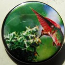 HUMMINGBIRD W/ MARIJUANA PLANT pinback button badge 1.25""