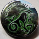 ASTROLOGY ZODIAC SIGN CAPRICORN pinback button badge 1.25""