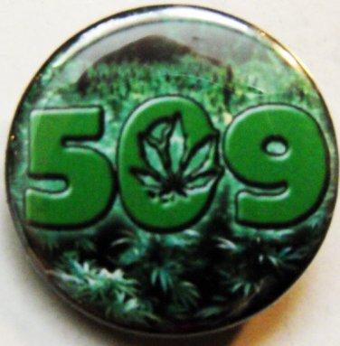 "509 MARIJUANA FIELD pinback button badge 1.25"""