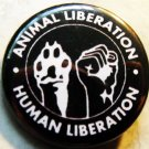 ANIMAL LIBERATION HUMAN LIBERATION pinback button badge 1.25""