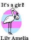 Its a Girl Return Address Labels