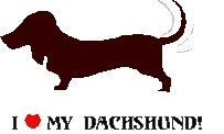 I Love My Dachshund! Return Address Labels