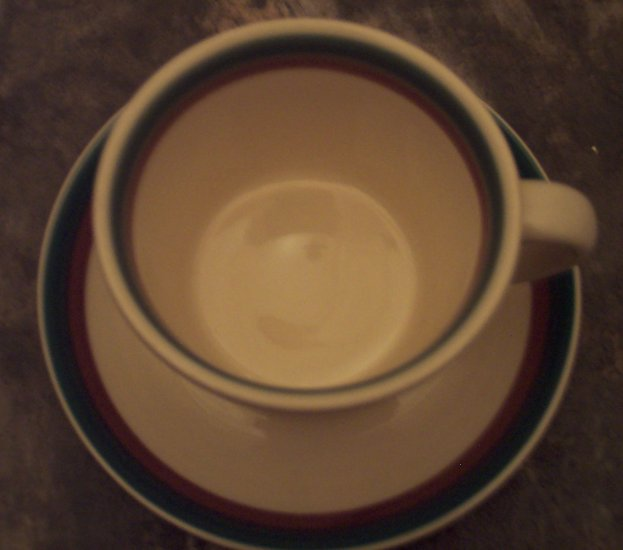 Pfaltzgraff Juniper Dinnerware Dish(es) - Mug Cup & Saucer Set Retired Discontinued