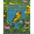 Garden Birds Of America ~ George H Harrison ~ Hardcover ~ Mint Copy ~ Willow Creek Press