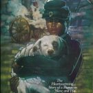 Dog Jack Florence W Biros Heartwarming Story of a Runaway Slave and His Best Friend location28