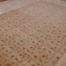 9x12 RUG VEGETABLE DYE BEIGE RED GREEN TRANSITIONAL NEW