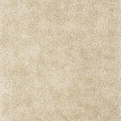 SHAG 9x13 AREA RUG SOLID IVORY HANDMADE TUFTED SOFT NEW