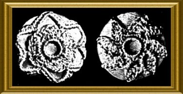 Vintage Crochet Buttons Pattern from 1908 PDF