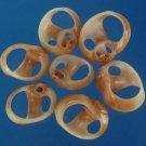 B564 Cut shells - Natica fasciata-03,  1 oz