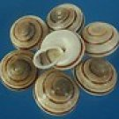 B576 Craft shells - Obba moricandi, 12 pcs